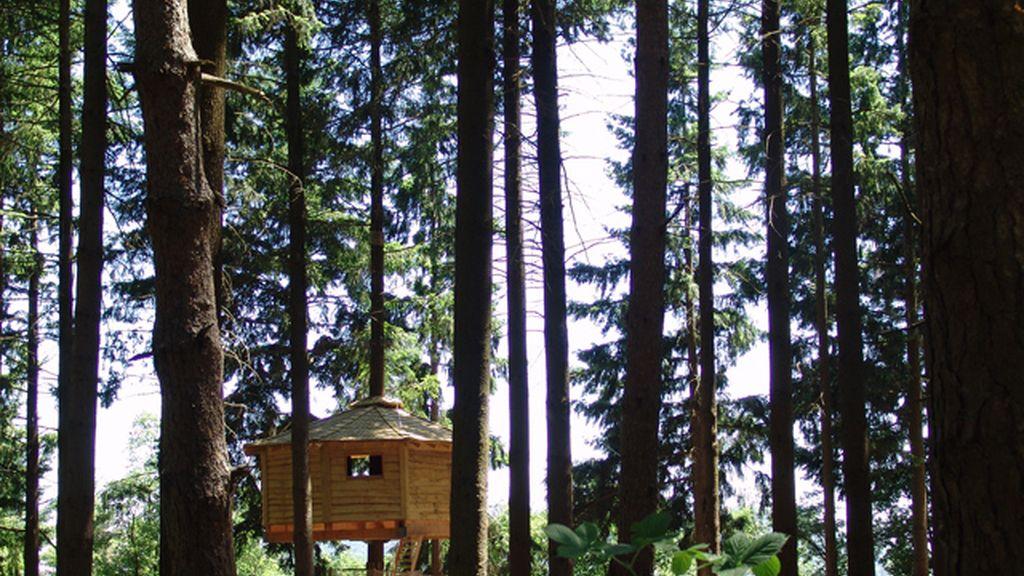 1. Cabanes als arbres