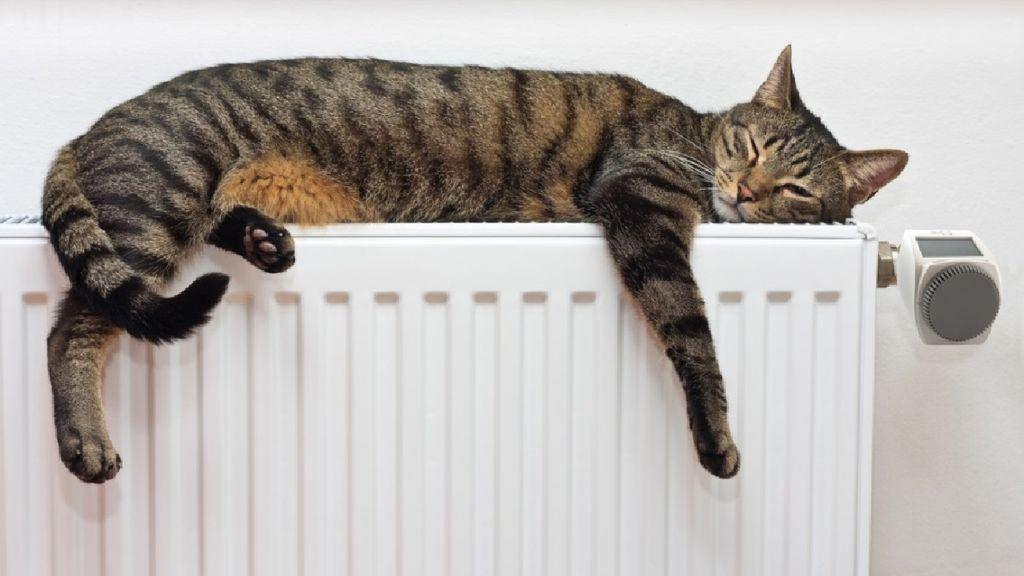 calefacción 2