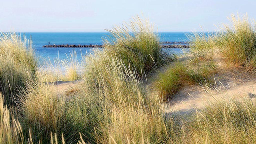 Los vientos más famosos de España