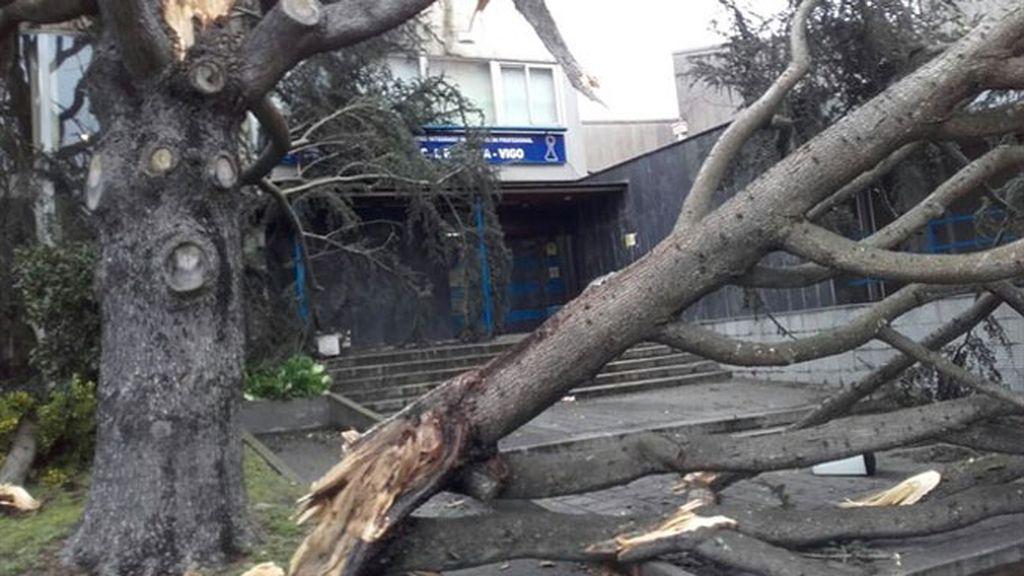 Olas colosales y viento arrollador: la peor parte del temporal y su eco en las redes