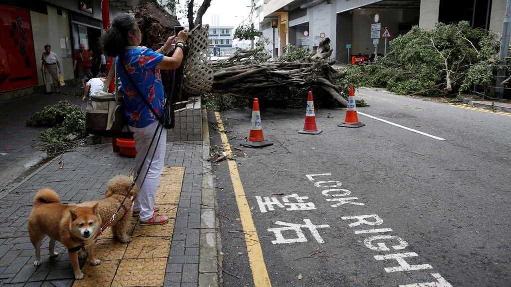 La lluvia y el viento dañaron 19.600 hectáreas de cultivos y 2.400 casas