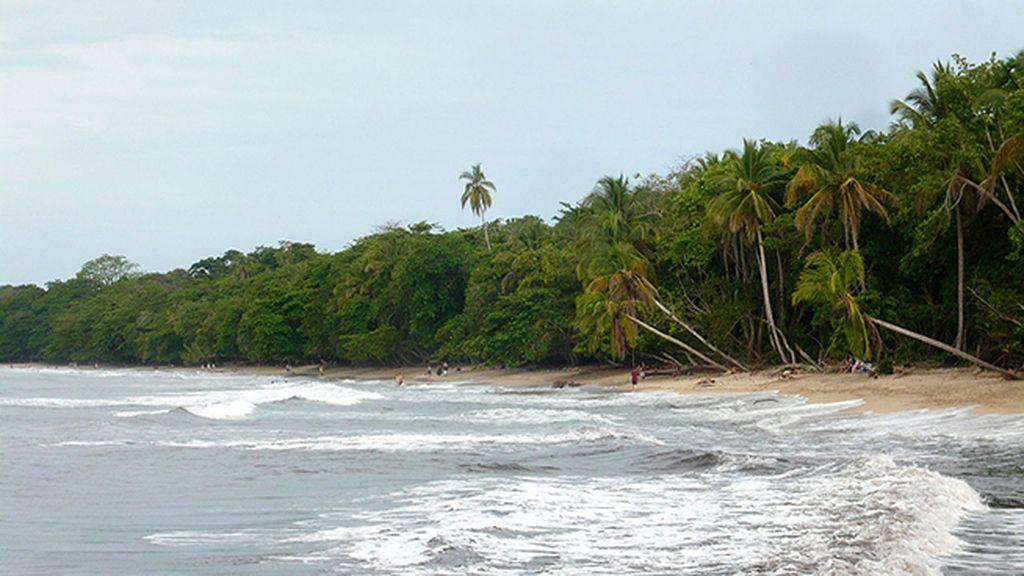 Cahuita, fauna exótica y kilómetros de selva costarriqueña