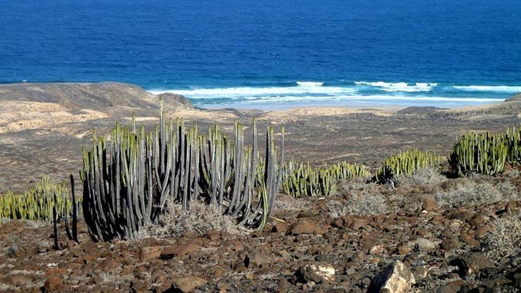 Escapada a Canarias
