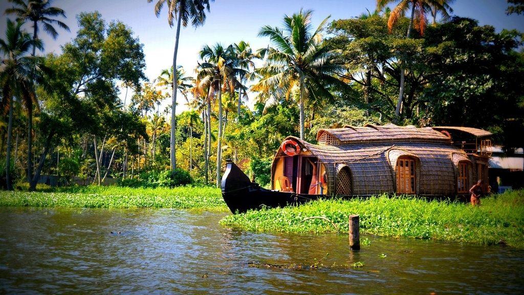 Embacadero en Kerala, donde habita la rana antigripe