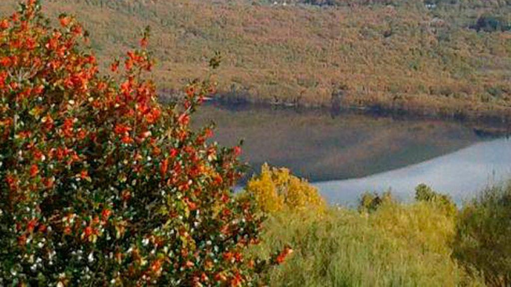En tierra de lobos en la Sierra de la Culebra (Zamora)
