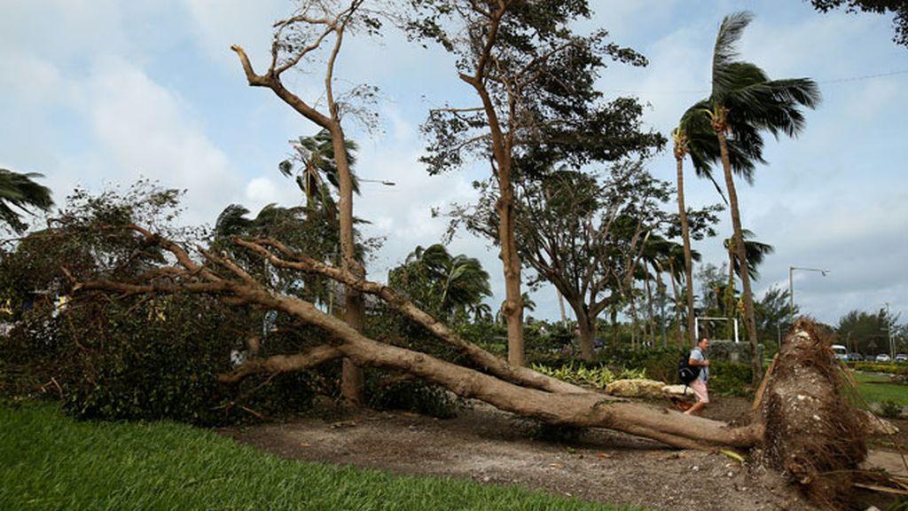 Las Bahamas, destrozos impactantes en las calles y ningún fallecido