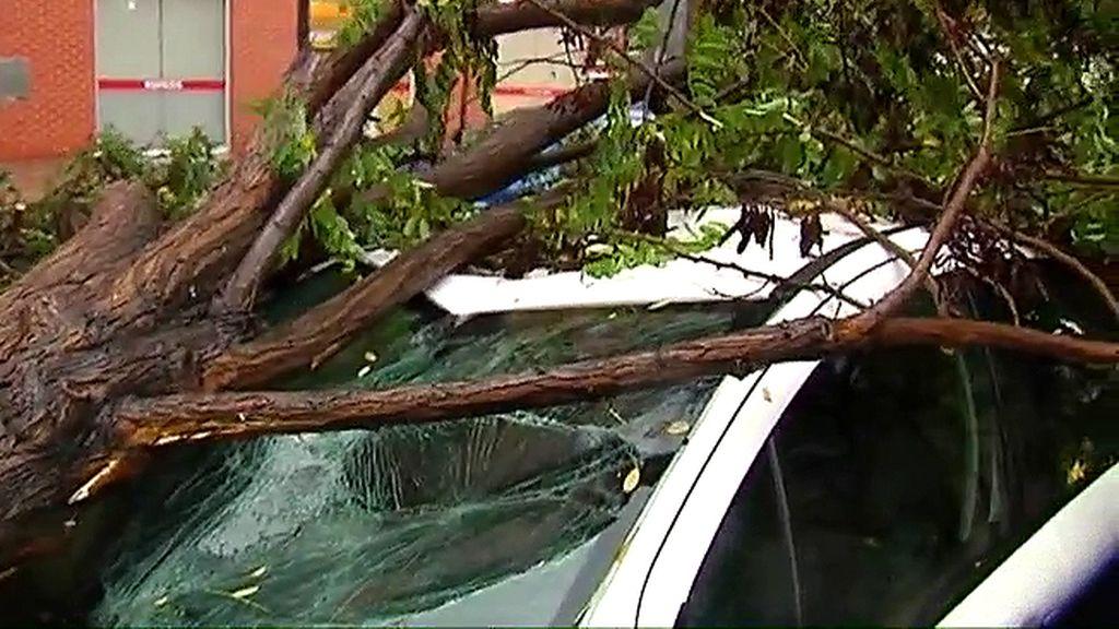 Los efectos del temporal en la Comunidad Valenciana