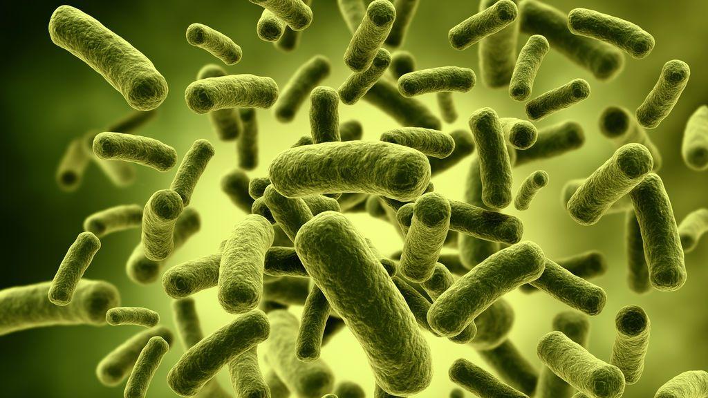 Crean un antibiótico capaz de acabar con las superbacterias