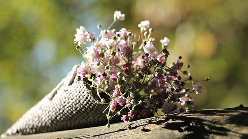flores san valentín