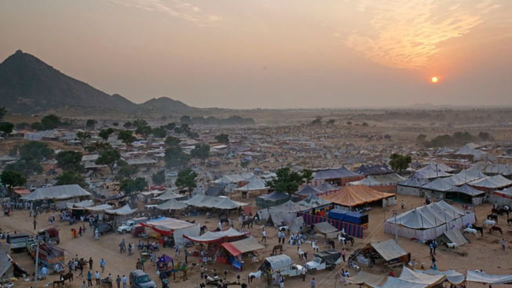 Feria de los camellos, en Pushkar (India)