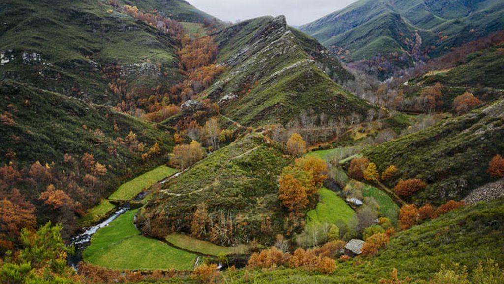 La Sierra do Courel (Galicia) será la más productora este año con 34.000 t de castañas