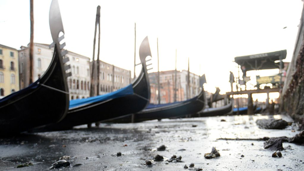 venecia 3