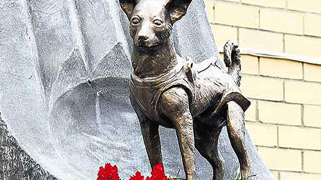 Laika fue el primer ser vivo en orbitar  la Tierra