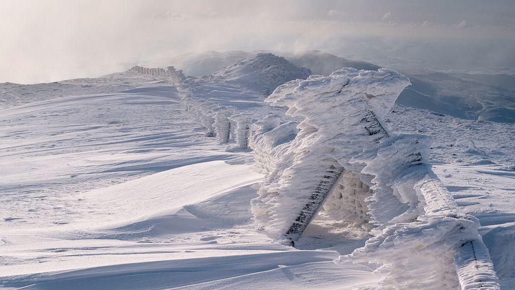 La tundra ártica en Gales (Reino Unido)