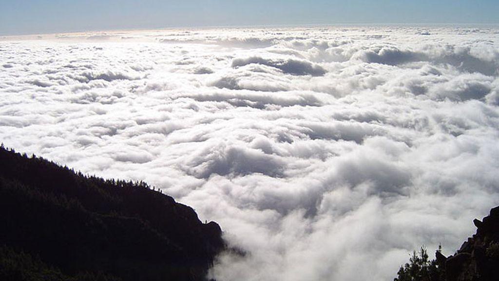 Alisios en Canarias
