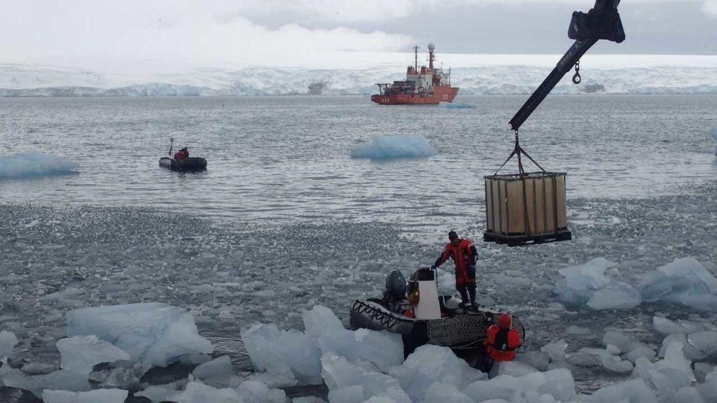 Hilo Moreno Antártida