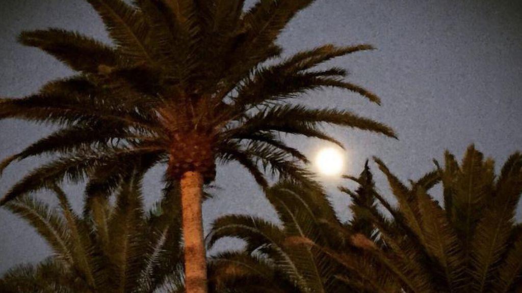 @TrypTenerife mezcla playas y lunas en esta imagen tomada en Tenerife (Islas Canarias)
