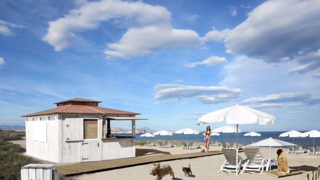 simulación playa perros