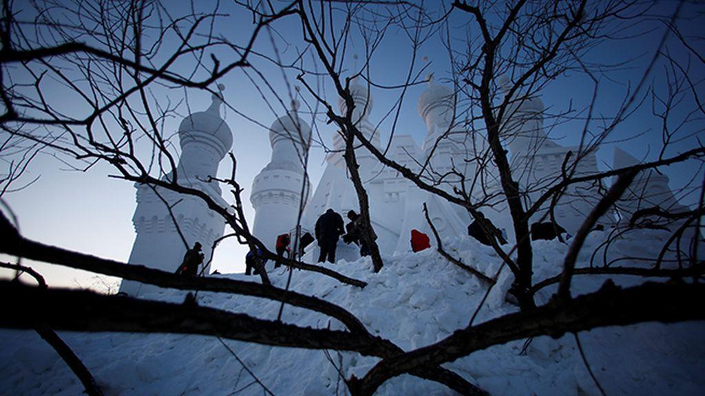 En invierno pueden alcanzar hasta -35 grados de temperatura