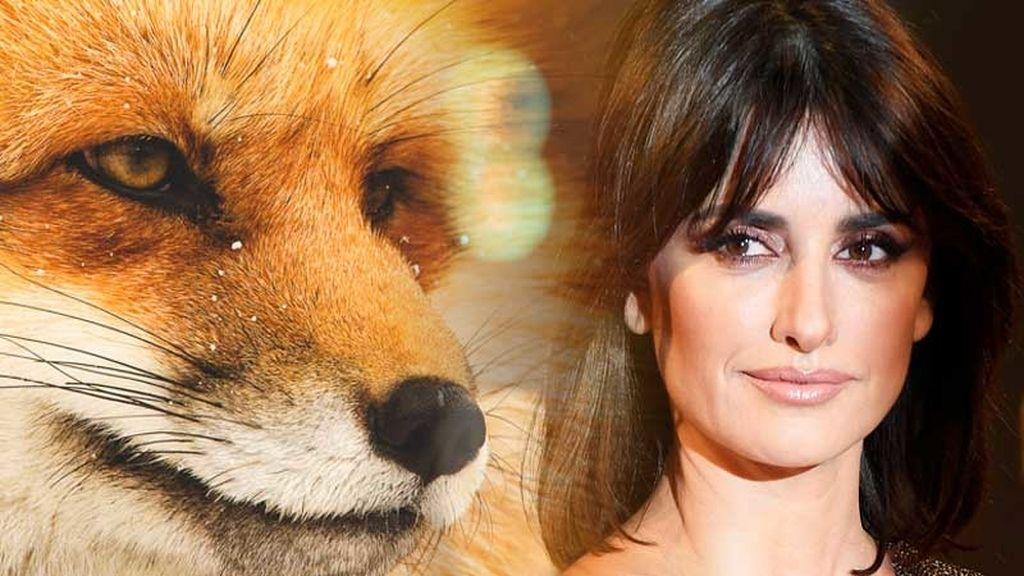 Penélope Cruz, contra las pieles y embajadora de una ONG que protege a los animales