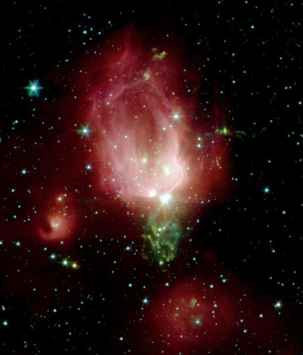 rosa espacial