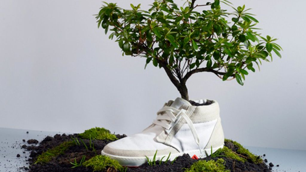 zapatos eco