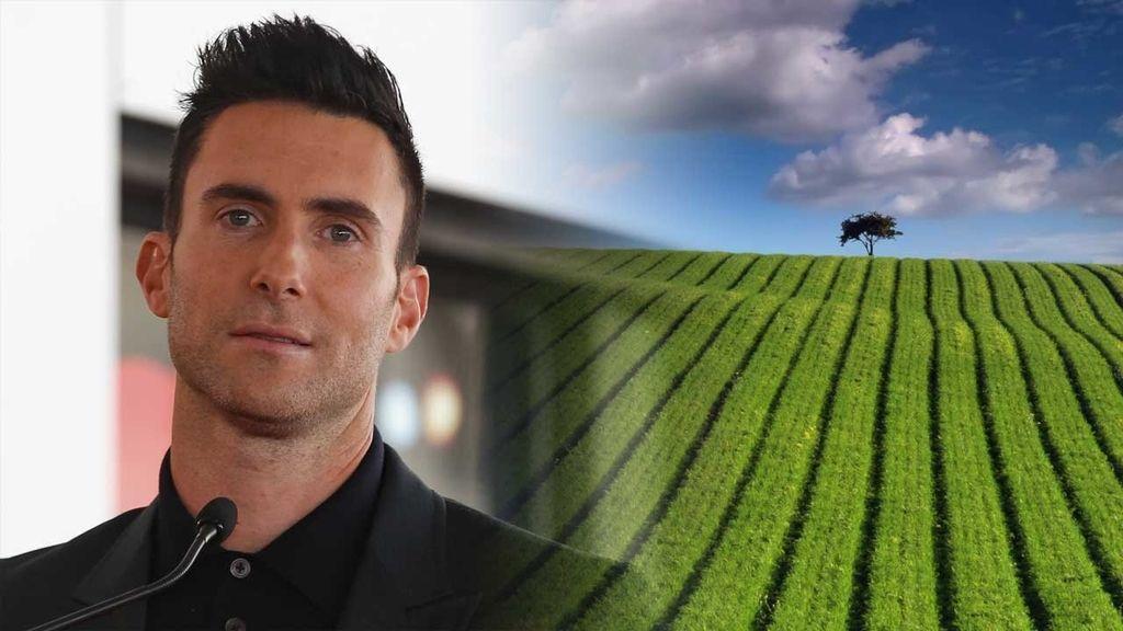 Adam Levine, artista 'verde' y defensor de la sostenibilidad en la música