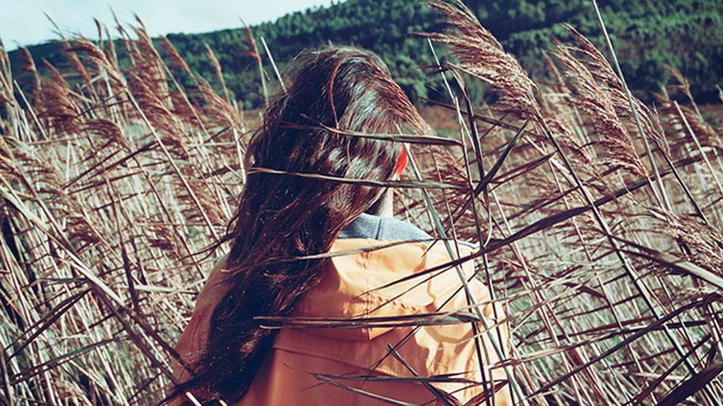 Las palabras se las lleva el viento, las escritas no, ¡todo lo que tienes que saber sobre el viento!
