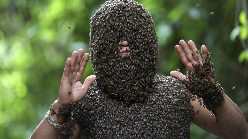 El hombre que no teme a las abejas salvajes