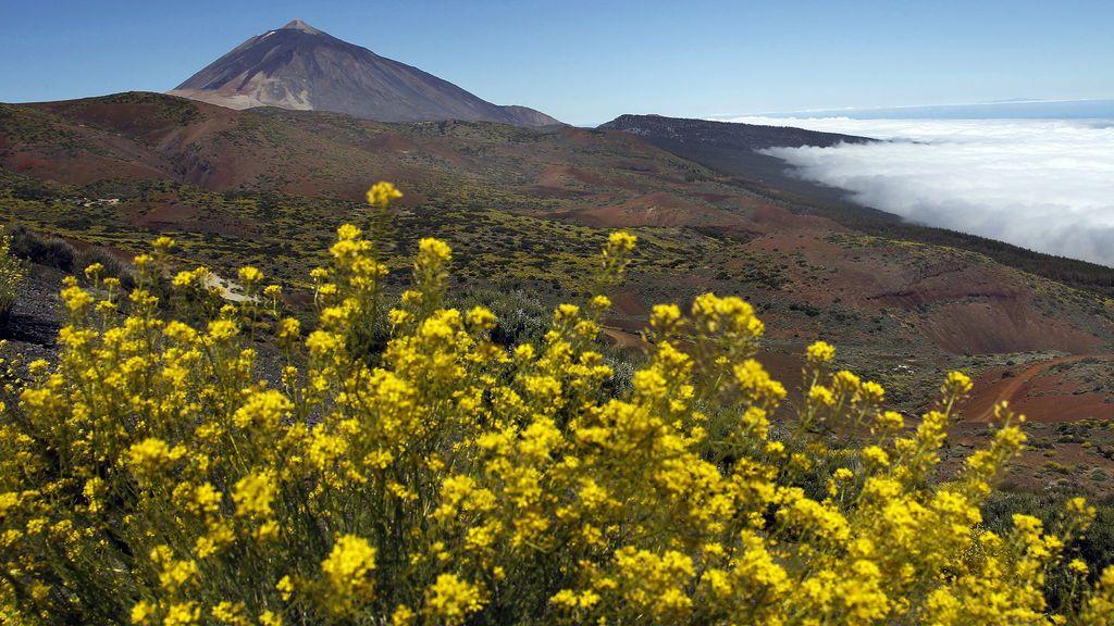El Parque Nacional del Teide, a examen