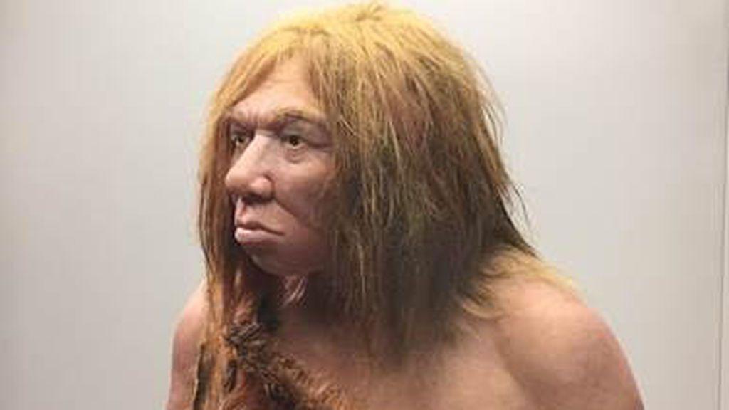 Una investigación revela que los neandertales estaban limitados para los trabajos artesanales a causa de sus manos