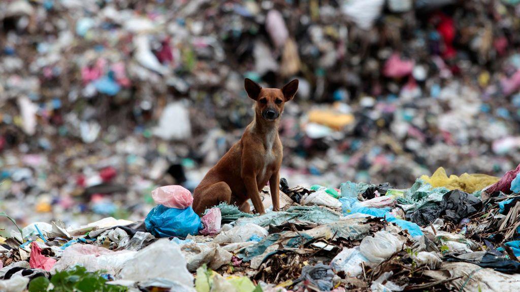 El basurero municipal de Masaya, Nicaragua