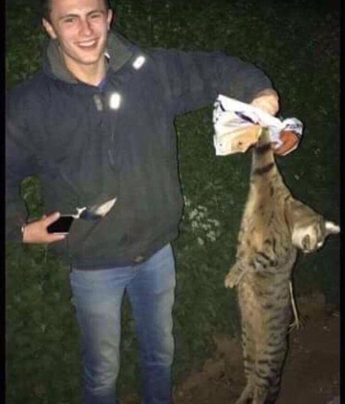 Suben a Snapchat como torturan y matan a un zorro, y al gato de un profesor