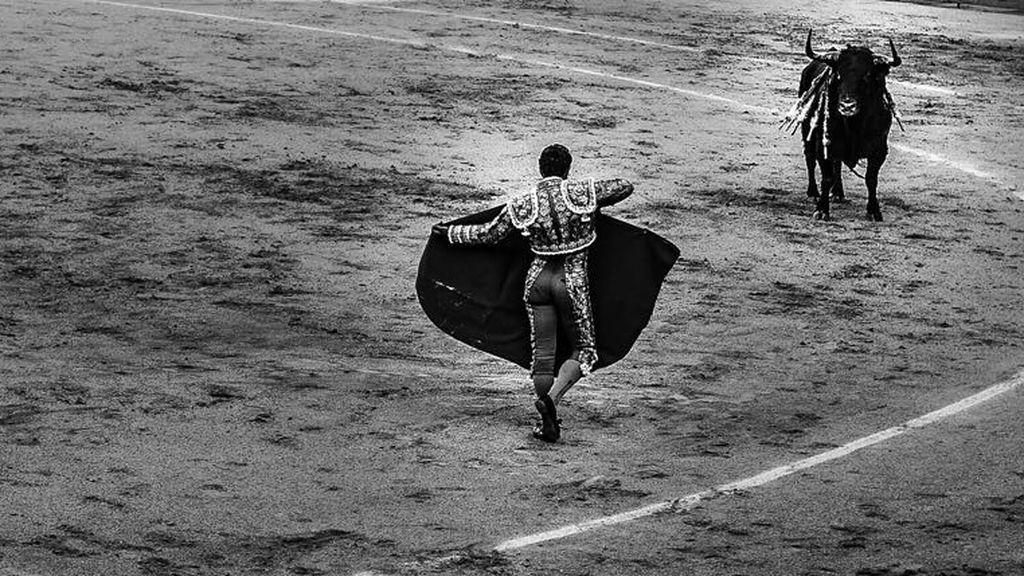 Espectáculo y valor: así recibía Fandiño al toro de rodillas en su última faena en Las Ventas