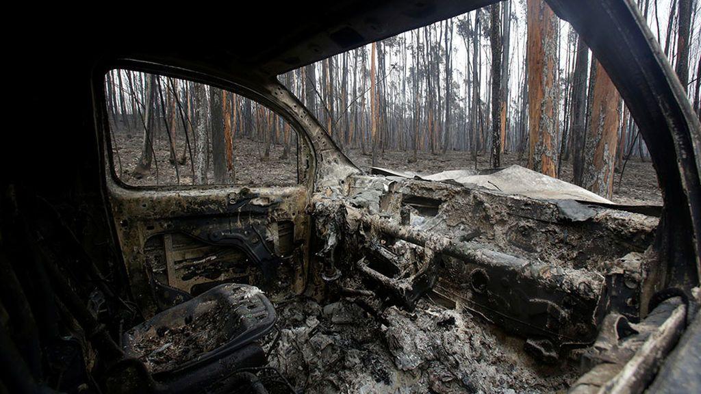 Ascienden a 64 los fallecidos en el incendio de Portugal