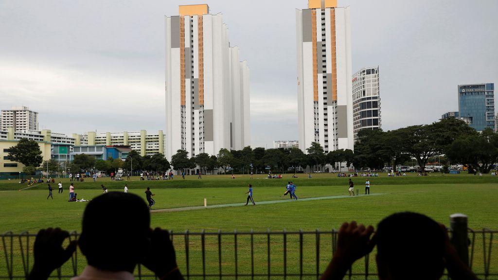 Cricket en la ciudad