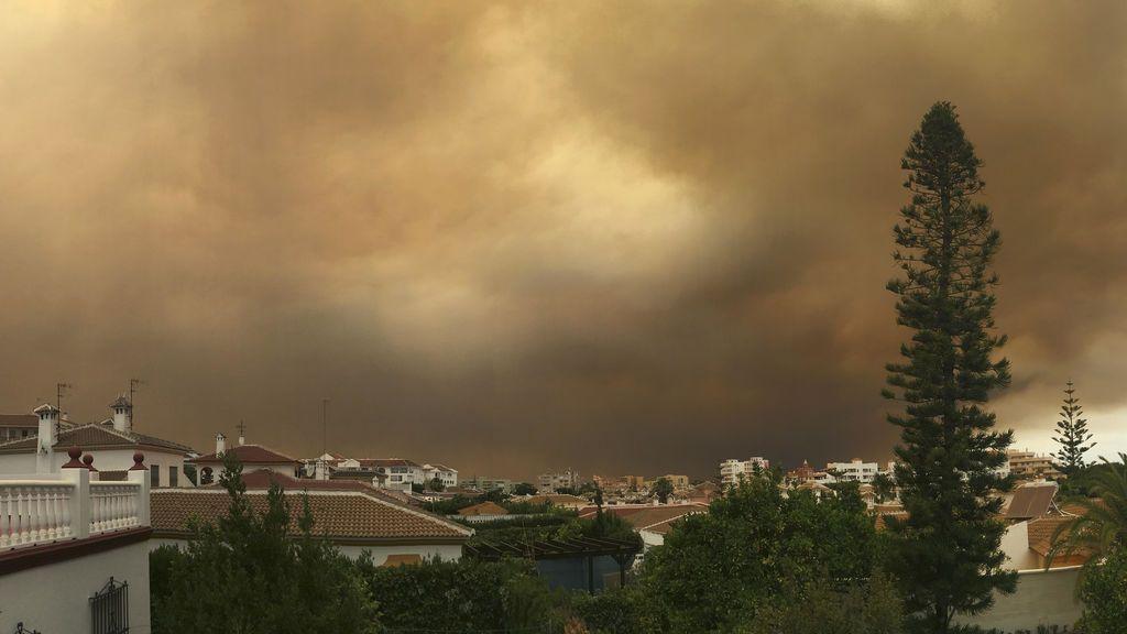 Imágenes del incendio forestal en Moguer (Huelva)