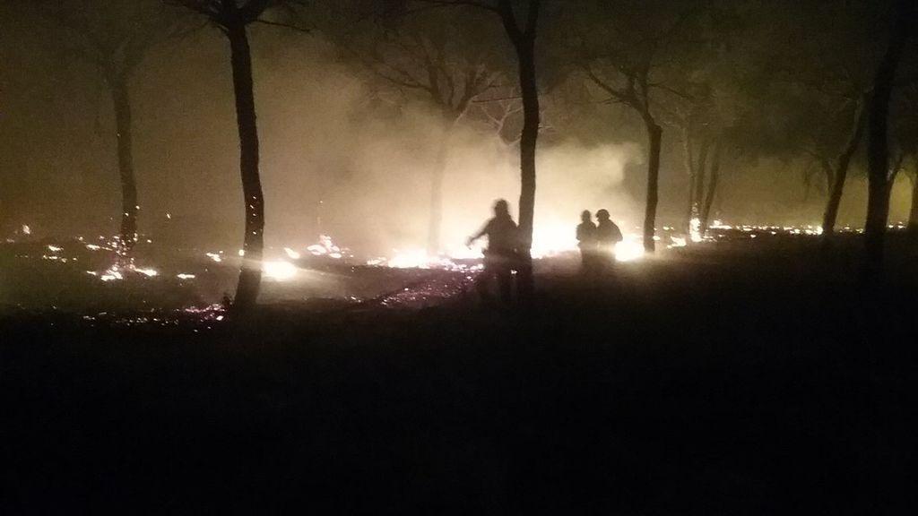 Desalojadas más de 300 personas por el incendio forestal de Moguer (Huelva)