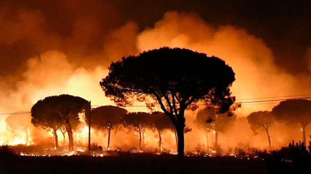 Desalojadas más de 2000 personas por el incendio forestal que afecta a una parte de Doñana