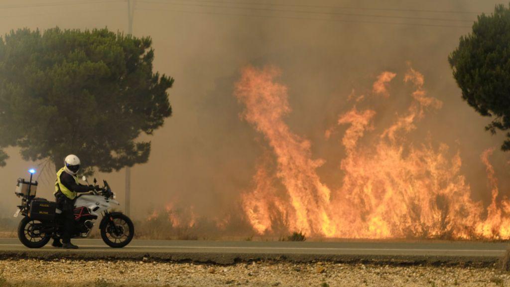 Cientos de efectivos luchan contra el incendio de Doñana