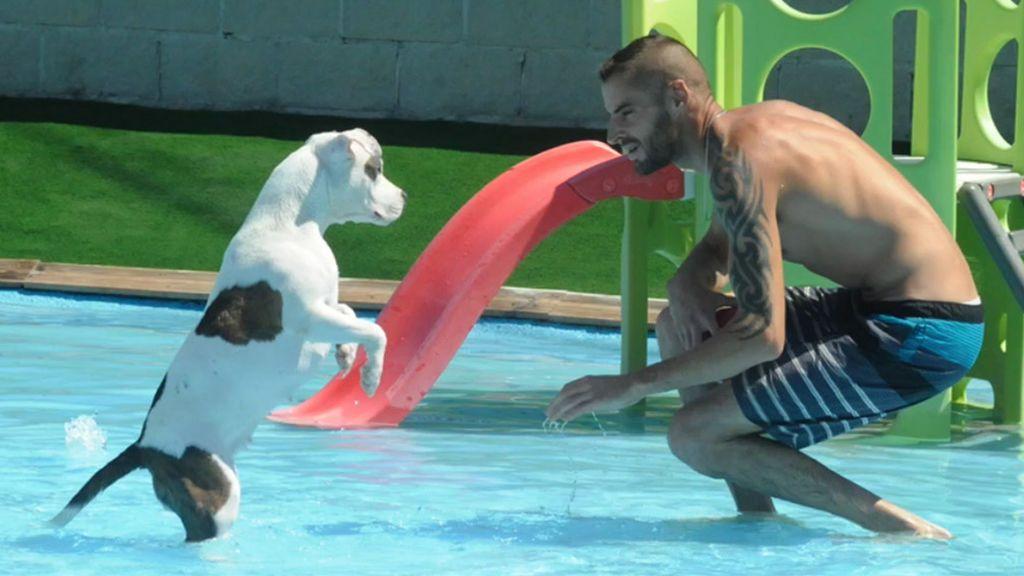 Los toboganes del Aqua Park Canino Can Janéa (Cataluña)
