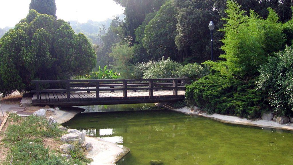 El pantano de Can Bogunyà de Terrassa (Barcelona)