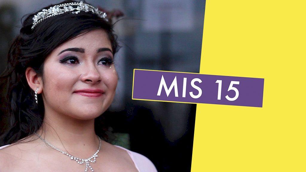MIS 15