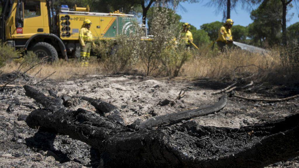 Barajan la hipótesis de una negligencia en una carbonería como causa del fuego en Doñana