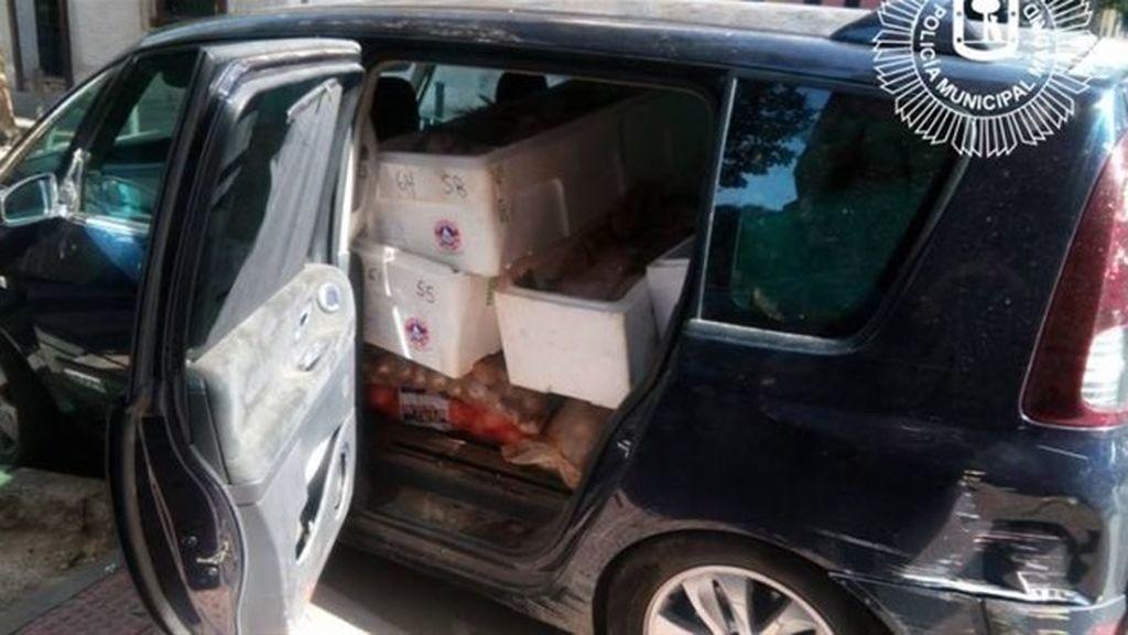 Intervenidos 2.200 kilos de alimentos en mal estado de un restaurante del barrio de Salamanca