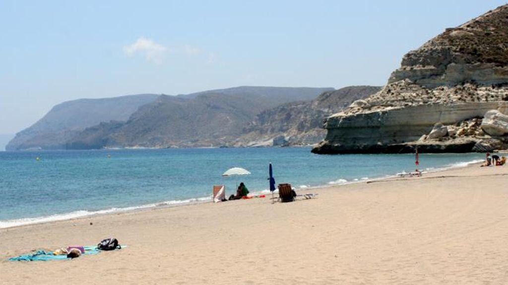 ¡Playas 'pet friendly'! Las playas perrunas para disfrutar del verano con tu mejor amigo