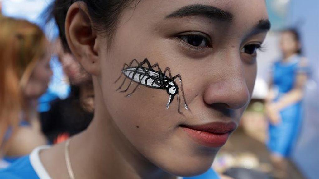Día Nacional de la Prevención de la Fiebre del Dengue