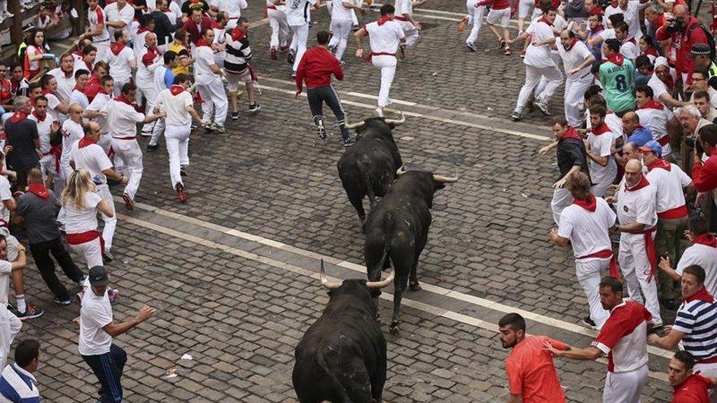 Los veloces toros de Jandilla corren un bonito encierro sin heridos de asta