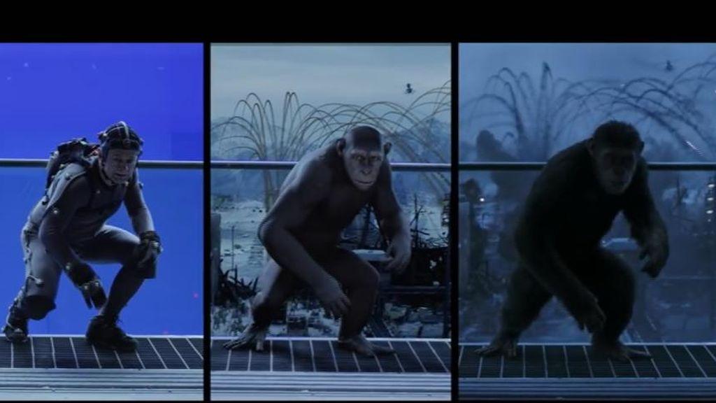 Los simios más digitales
