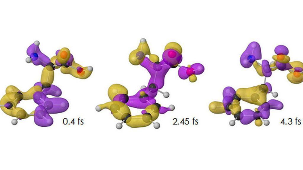 Variación de la densidad de carga con el tiempo para el isómero confórmocional o confórmero más estable del aminoácido fenilalanina (con el tiempo expresado en femtosegundos). El exceso o defecto de carga respecto al valor promedio se representa, respectivamente, en color amarillo o púrpura